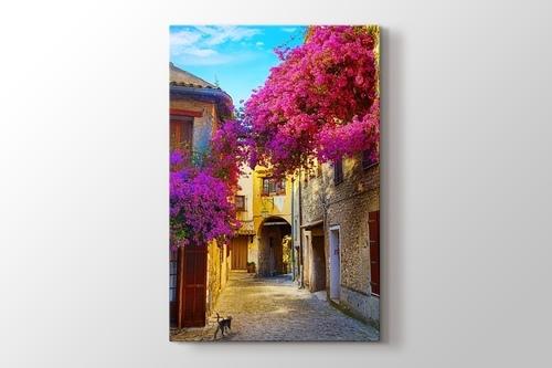Erguvan ve Provence Sokakları görseli.