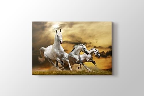 Atlar 2 görseli.