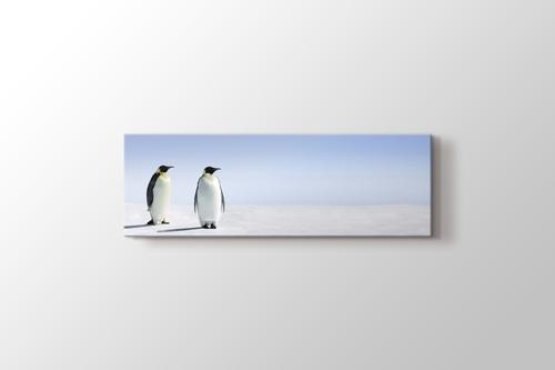 Penguins görseli.
