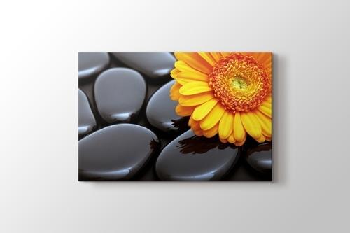 Black Pebbles and Flower görseli.
