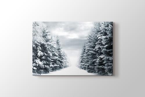 Snowy Road Between Trees görseli.