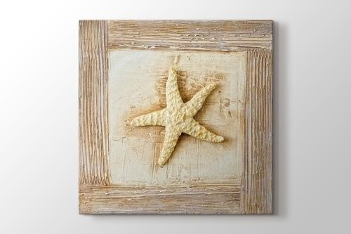 Starfish görseli.