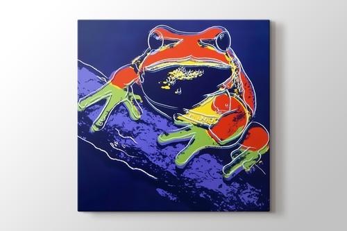 Frog görseli.