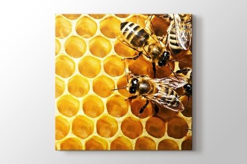 Bees on Honeycomb görseli.