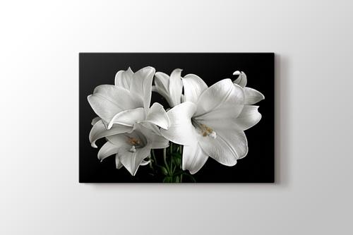 White Flower görseli.