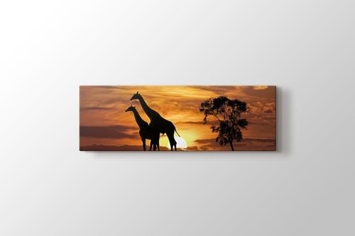 Giraffes and the Sunset görseli.