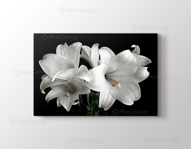 White flower zambak kanvas tablo burada pluscanvas white flower grseli mightylinksfo