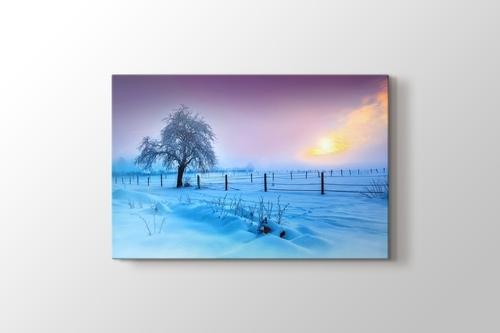 Kar ve Ağaç görseli.