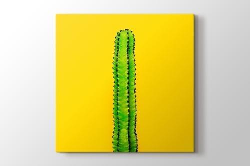 Green Cactus on Yellow görseli.
