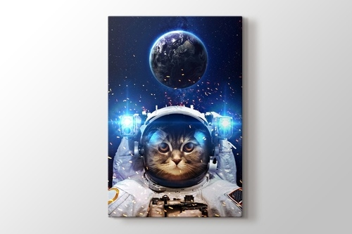 Beautiful Cat in Outer Space görseli.