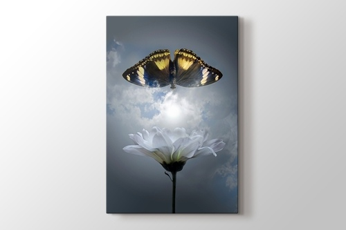 Butterfly - Kelebek görseli.