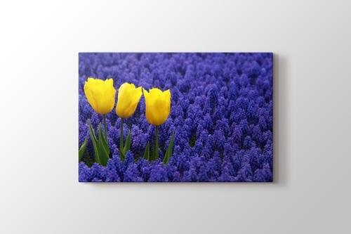Three Yellow Tulips görseli.