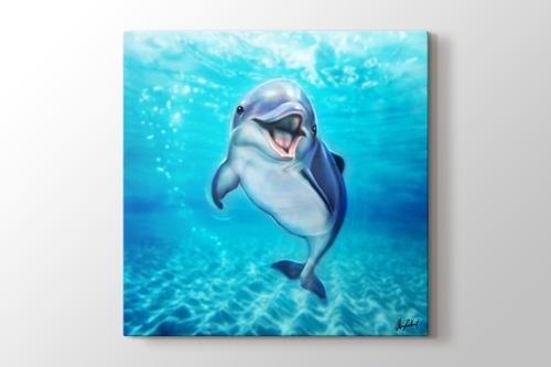 Küçük Yunus Balığı görseli.