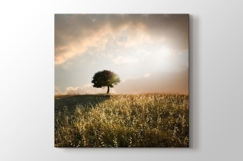 Loner Tree görseli.