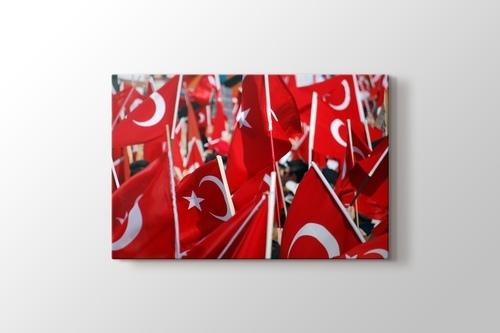 Izmir - Republican Rally 2009 görseli.