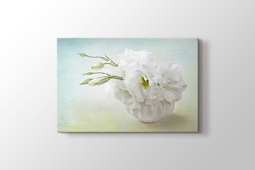 Beyaz Çiçekler görseli.