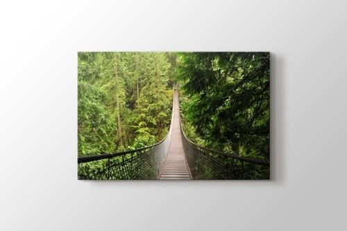 Orman içinde Köprü görseli.
