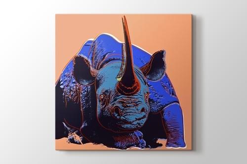 Rhinoceros görseli.