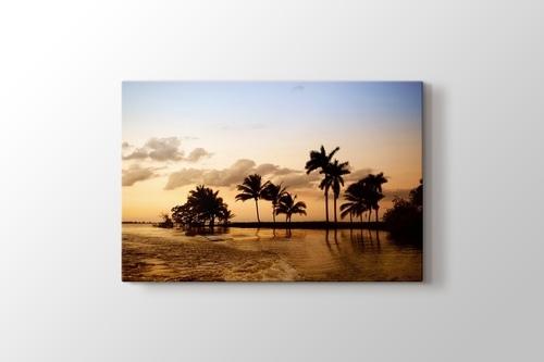 Palms in Ocean görseli.