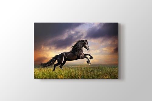 Black Friesian Horse görseli.