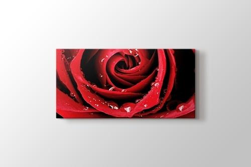 Red Rose Close Up görseli.
