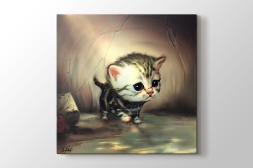 Yavru Kedi görseli.
