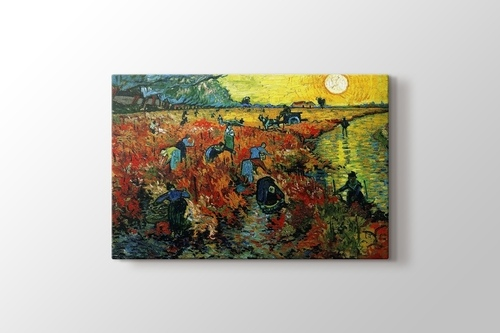 Red Vineyards görseli.
