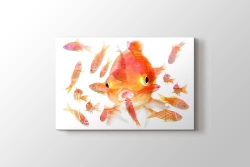 Fishes görseli.