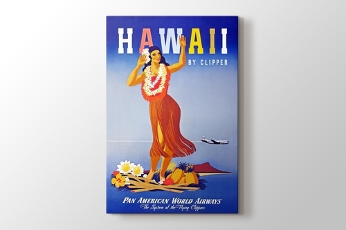 Hawaii Vintage Posteri görseli.
