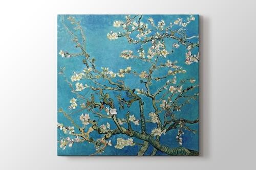 Çiçek açan badem ağacı görseli.