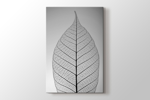 Skeleton Leaf görseli.