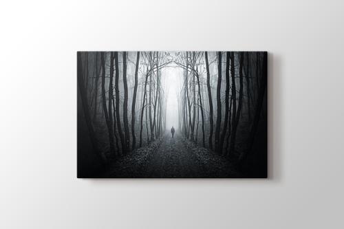 Ormanda Yol görseli.