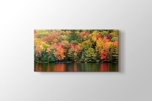 Autumn Foliage görseli.