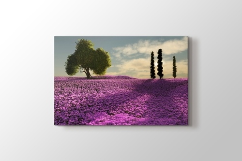 Trees and Lavender Field görseli.