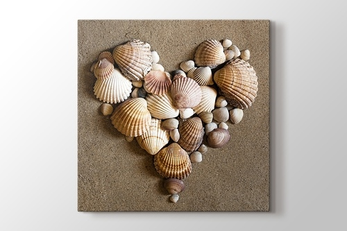 Heart Shaped Sea Shells görseli.