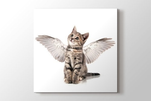 Angel Cat görseli.