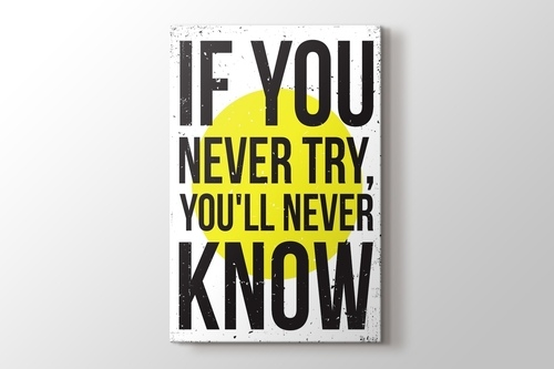 Never Try Never Know görseli.