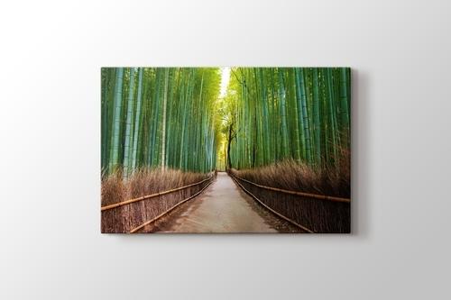 Bamboo Forest in Kyoto Japan görseli.