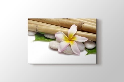 Bamboo görseli.