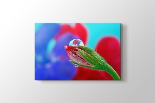 Çiçek Tomurcuğu görseli.