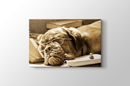 Doggy Dog görseli.