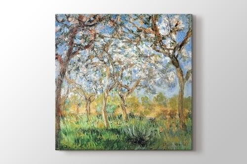 Giverny in Springtime görseli.