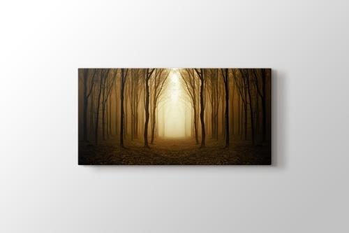 Altın Orman görseli.