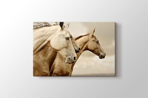 Atlar görseli.