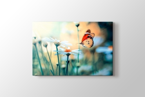 Kırçiçekleri ve Kelebek görseli.