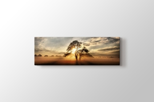 Sunlight through Tree görseli.