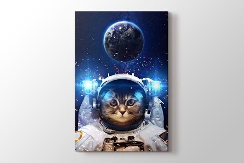 Beautiful Cat in Outer Space görseli.
