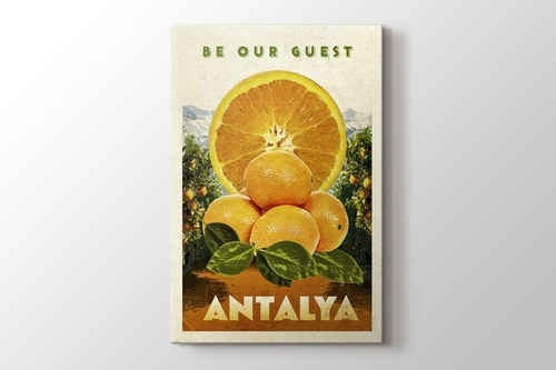 Antalya Portakal görseli.