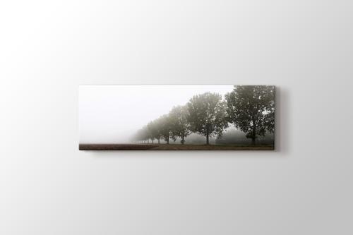 Trees in the Highland görseli.