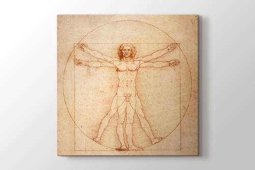 Vitruvian Man görseli.